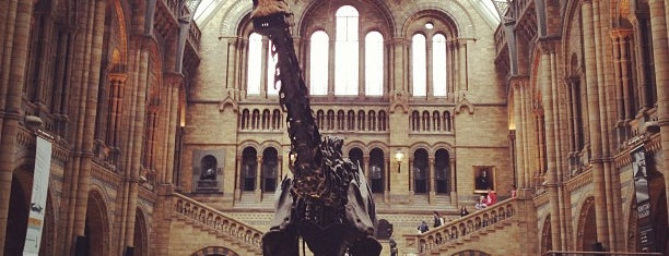 Museo de Historia Natural is one of Inglaterra.