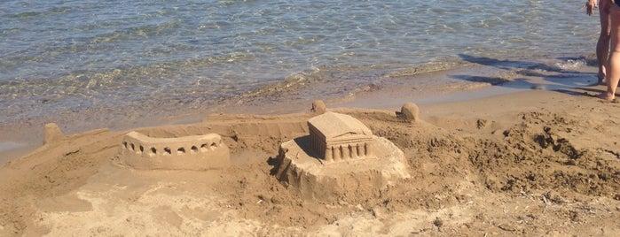 Golden Sand Hotel is one of สถานที่ที่ Fatih ถูกใจ.