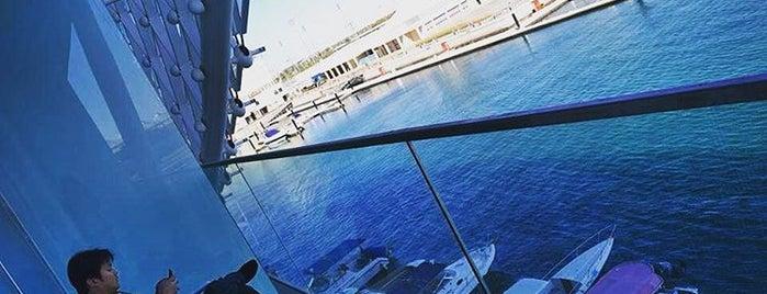 Cavalli Caffe F1 @ Yas Viceroy Hotel - Abu Dhabi is one of Abu Dabi.