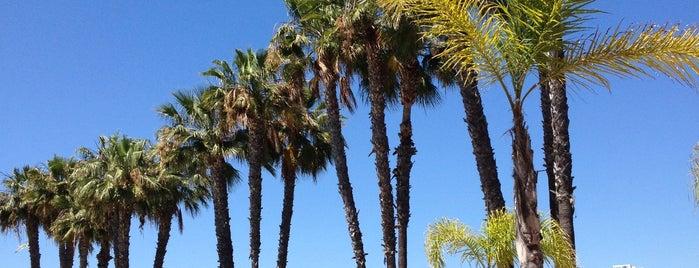 La Riviera Pool Bar - Coronado Island is one of SD.