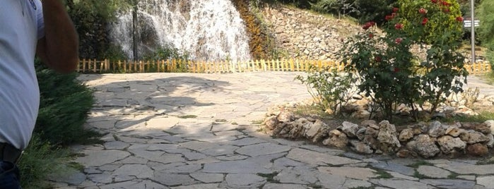 Botanik Aile Çay Bahçesi is one of Locais curtidos por Asena.