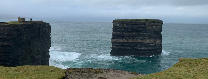 Downpatrick Head is one of Lieux qui ont plu à Will.