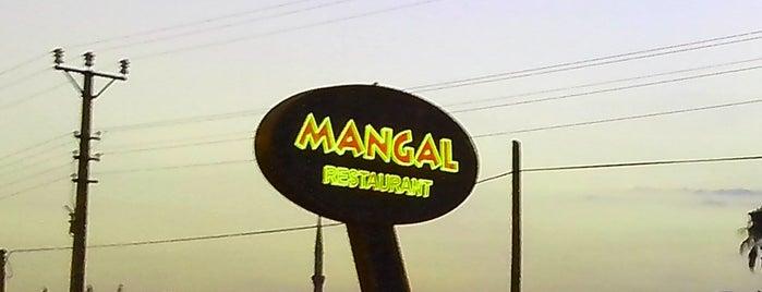 Mangal Restaurant is one of Rukiyeさんの保存済みスポット.