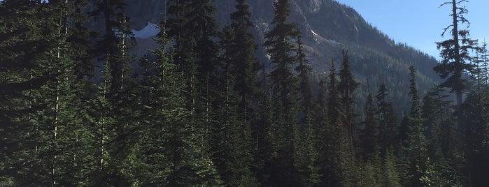 Washington Pass Overlook is one of สถานที่ที่ Jacquelin ถูกใจ.