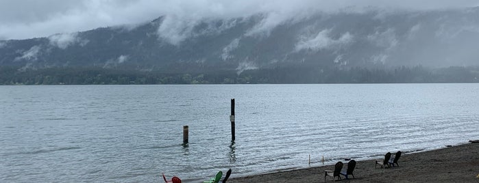 Lake Quinault is one of Pacific North West.