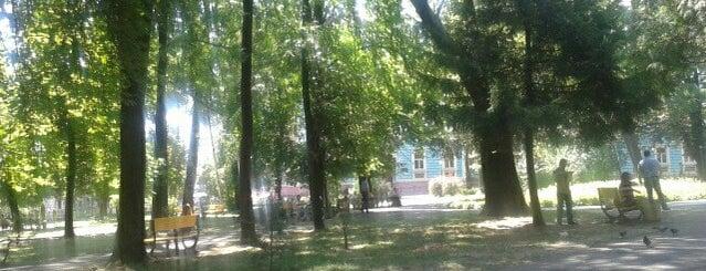 Сквер на Соборній площі is one of Черновцы.