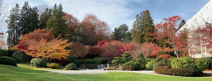 Momiji Gardens is one of Lieux sauvegardés par Soledad.