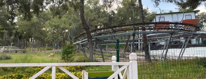 Park Funtastic is one of Locais curtidos por Levent.