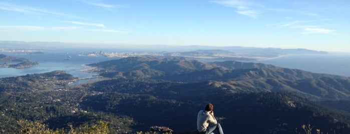 Mount Tamalpais State Park is one of Day Trips.