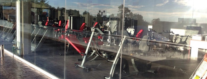 Snap Fitness Gym is one of Lugares favoritos de Fernando.