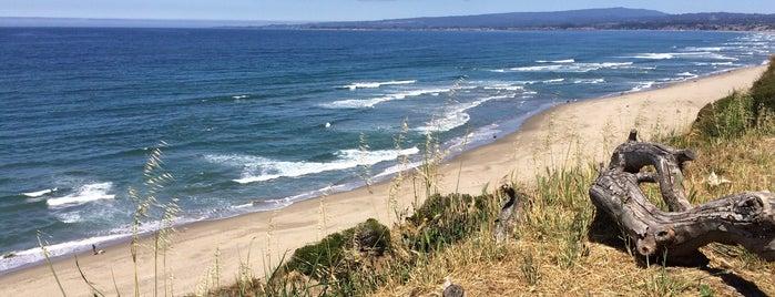 La Selva Beach is one of Santa Cruz.