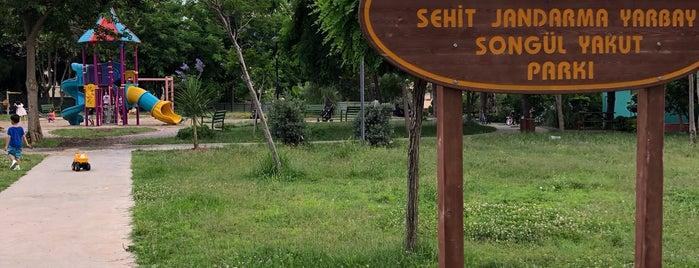 Şehit Jandarma Yarbay Songül Yakut Parki is one of Tempat yang Disukai Ümit.