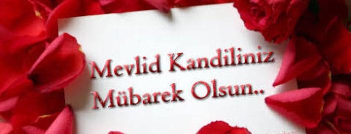 Gok Otomotiv is one of Posti che sono piaciuti a Yılmaz.