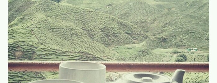 Cameron Valley Tea House is one of Cameron Highlands.