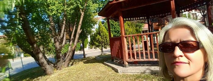 3 Fidan Parki is one of Galip Koray 님이 좋아한 장소.