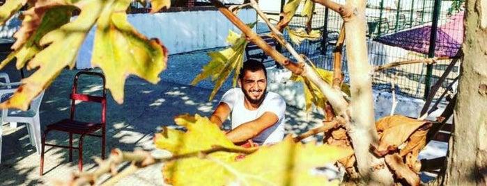 Dostlar Sitesi Silivri is one of Posti che sono piaciuti a Mehmet.