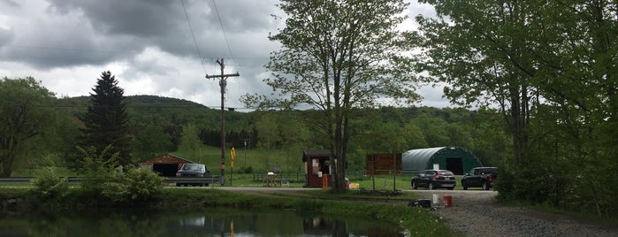 Beaverkill Trout Hatchery is one of Hudson Valley.