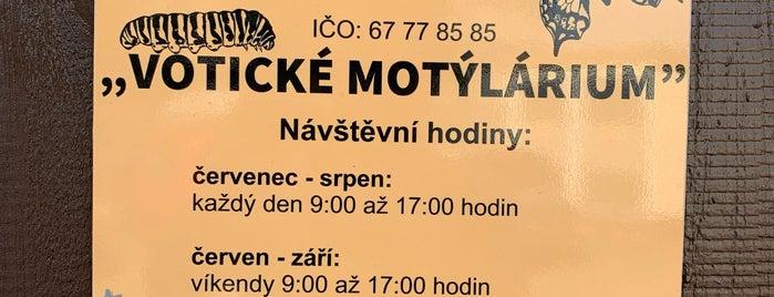 Votické motýliárum is one of Travel - CR.