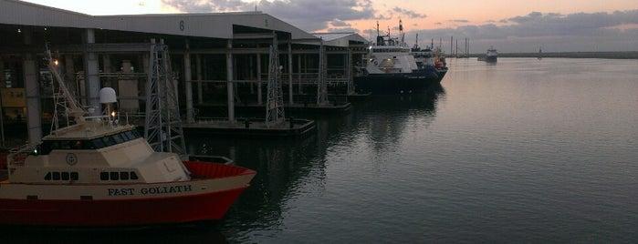 C-Port 1 is one of Tempat yang Disimpan Coleen.