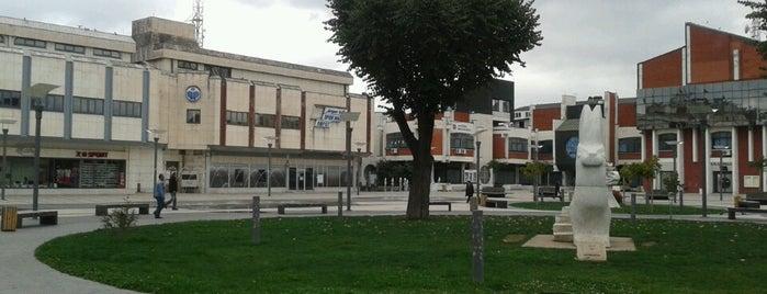 Novi Trg (ex Crveni Trg) is one of Locais curtidos por Dragana.