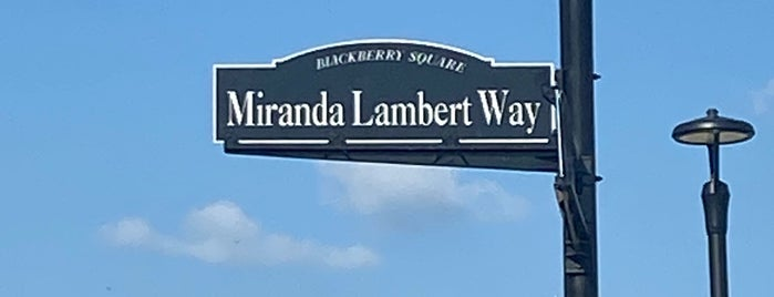 Miranda Lamberts Pink Pistol is one of Texas.