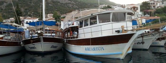 Aquarium Boat is one of Lieux sauvegardés par Irem.