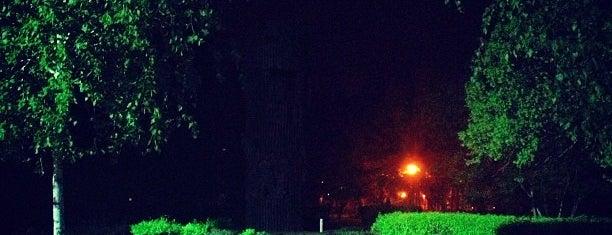 Parcul Kiseleff is one of Posti che sono piaciuti a Matei.