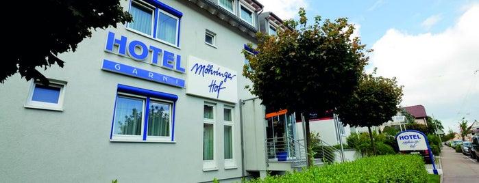 AKZENT Hotel Möhringer Hof is one of AKZENT Hotels e.V..
