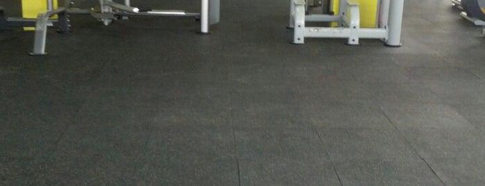 Fitness Flex Gym is one of Sureyya: сохраненные места.