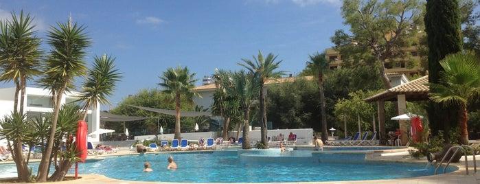 Mar Hotels Rosa del Mar & Spa is one of Orte, die Kasia gefallen.