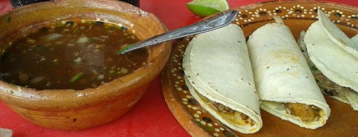 El Borrego Loco is one of Costa maya.