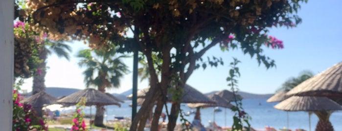 Seaside Beach Club is one of Orte, die Kerem gefallen.