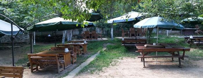 Çamlı Konak Kahvaltı & Mangalbaşı is one of Sapanca - Abant.