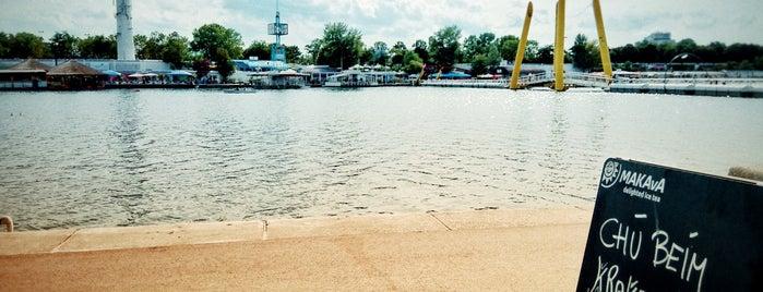 Krokodü Am Copa Beach is one of TD.