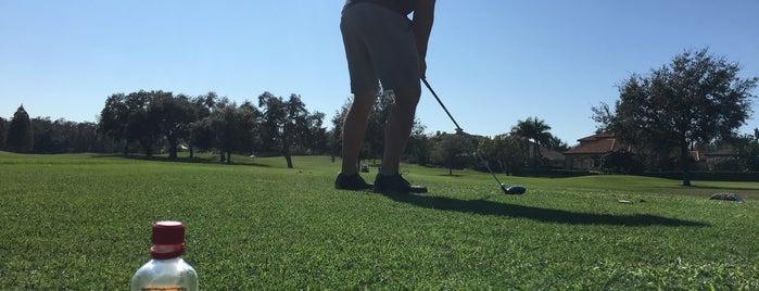 Islands Golf Course @ Innisbrook is one of Steve'nin Beğendiği Mekanlar.