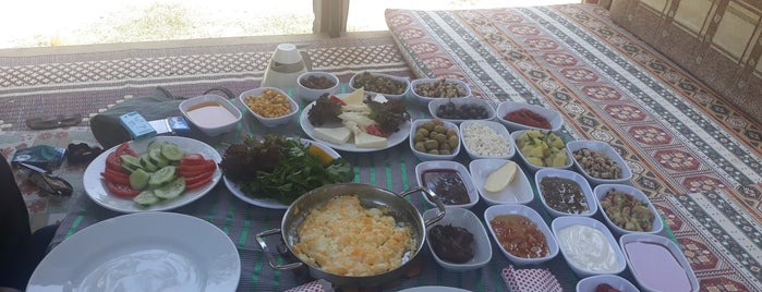 Efe Köy Kahvaltısı Ve Çay Bahçesi is one of Onur : понравившиеся места.