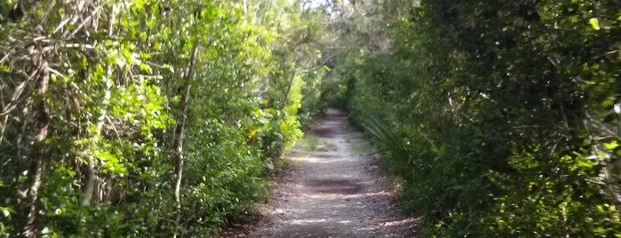 Hugh Taylor Birch State Park is one of Hollywood, FL.