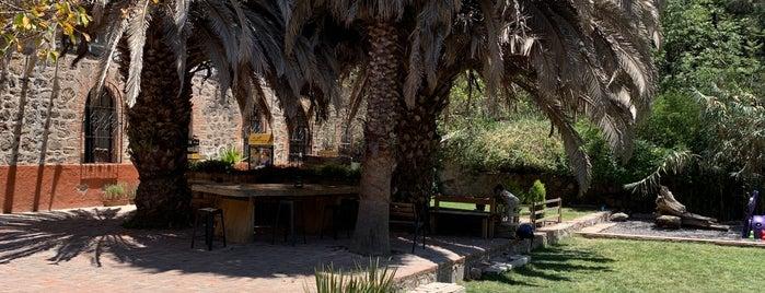 San Miguel Allende City guide