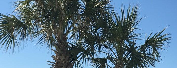 My Beachside Happy Place is one of Posti che sono piaciuti a Ryan.