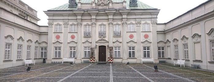 Pałac Pod Blachą is one of faenza.