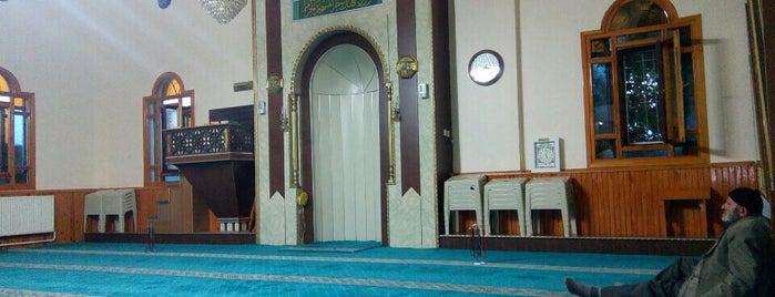 Ashab-ı Kiram Camii is one of Konya Meram Mescit ve Camileri.
