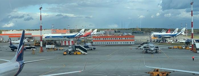 Terminal B is one of Olga'nın Beğendiği Mekanlar.