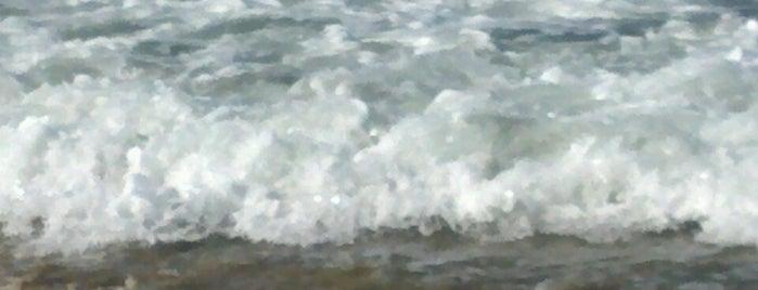 Bolsa Chica Beach is one of Tempat yang Disukai Cesiah.