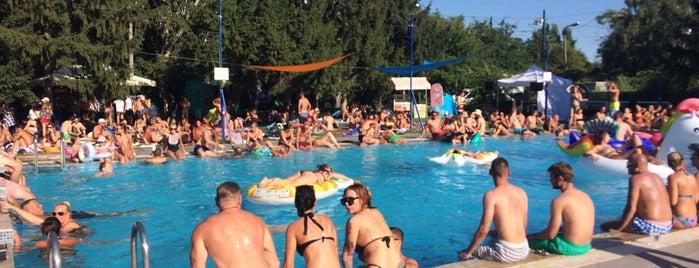 Vituki Sport- és Szabadidőközpont is one of สถานที่ที่ Szilágyi ถูกใจ.