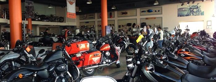 Harley- Davidson هارلي ديفيدسون is one of Orte, die Arwa gefallen.
