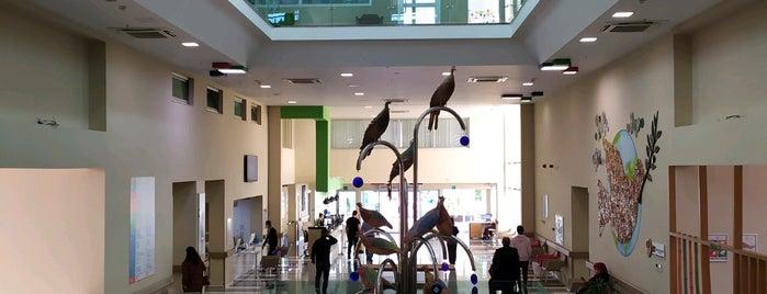 Özel ASV Yaşam Hastanesi Life Hospital is one of Haydar'ın Beğendiği Mekanlar.