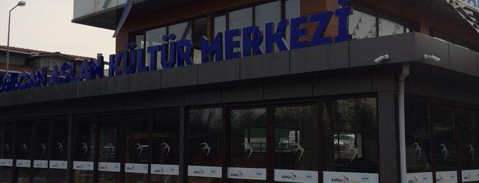 Özgecan Aslan Kültür Merkezi - Beylikdüzü Belediyesi is one of สถานที่ที่ Erkan ถูกใจ.