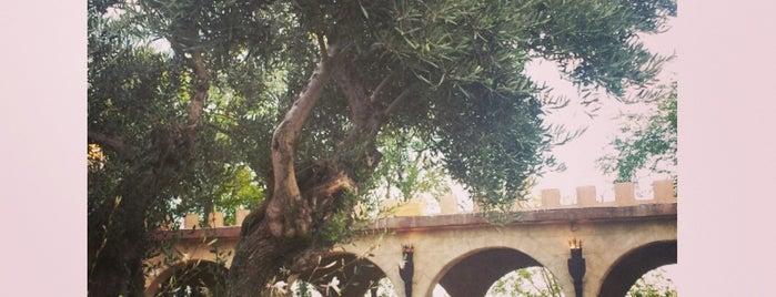 El Manjar De Talamanca is one of Tempat yang Disukai Ilde.