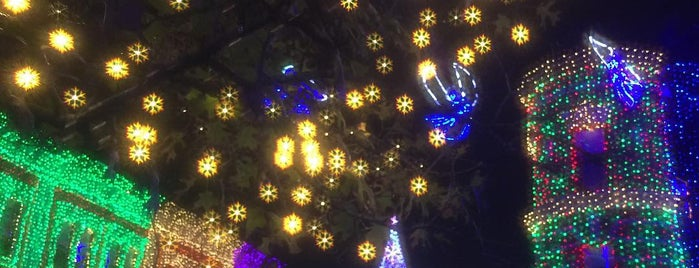 The Osborne Family Spectacle of Dancing Lights is one of Orte, die Donna gefallen.