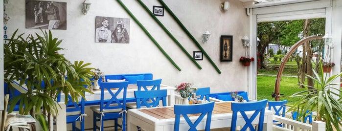 Blue Monkey Cafe&Bar is one of Gitmek Gormek Yasamak Lazim.